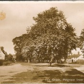 Post Card looking towards Lows Lane